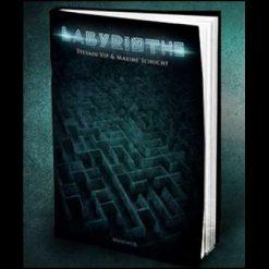 Labyrinthe book-test