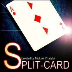 2293_split_card_mickael_chatelain