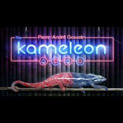 2301_Kameleon_Pierre-Andre_Gosselin