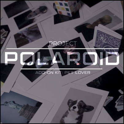 Project Polaroid extension