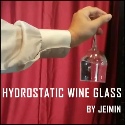 Hydrostatic Wine Glass