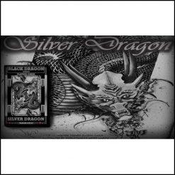 Jeu Silver Dragon