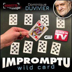 Impromptu wild card - Dominique Duvivier