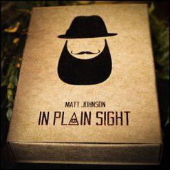 In Plain Sight - Matt Johnson